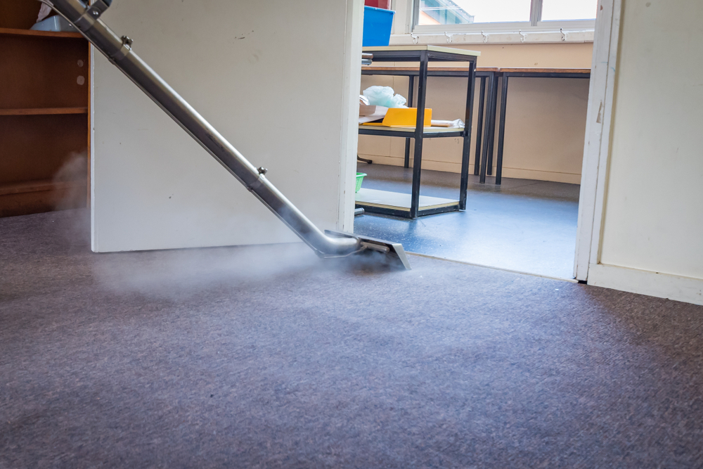 Why Carpet Cleaning is so Important